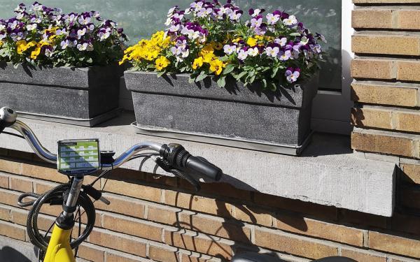 fiets voor het raam