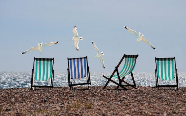 strandstoelen en meeuwen op het strand