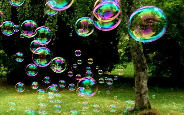 Zeepbellen in bos